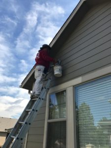 Monarch Roofing and Construction Painting Division 16